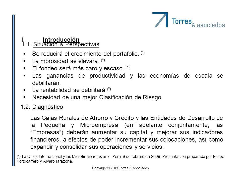 Copyright ® 2009 Torres & Asociados