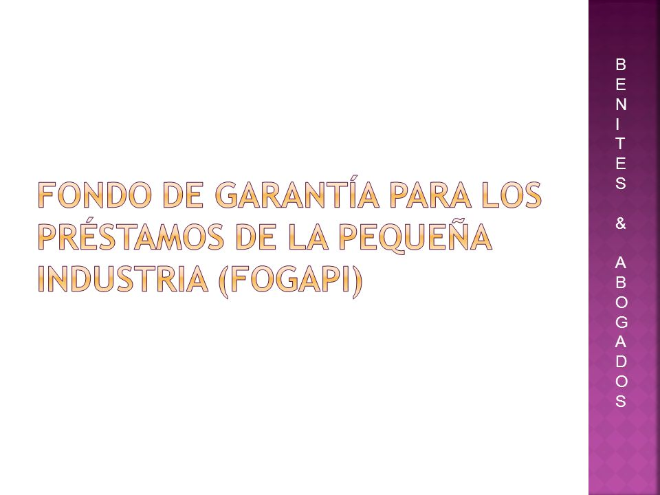 Fondo de Garantía para los Préstamos de la Pequeña Industria (Fogapi)