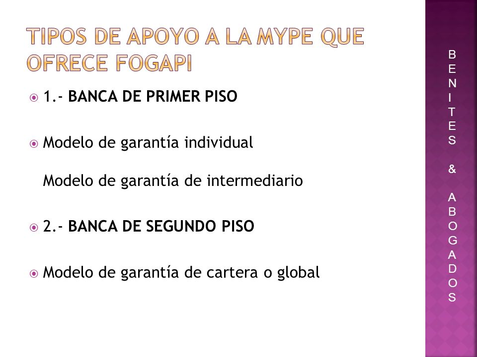 TIPOS DE APOYO A LA MYPE QUE OFRECE FOGAPI