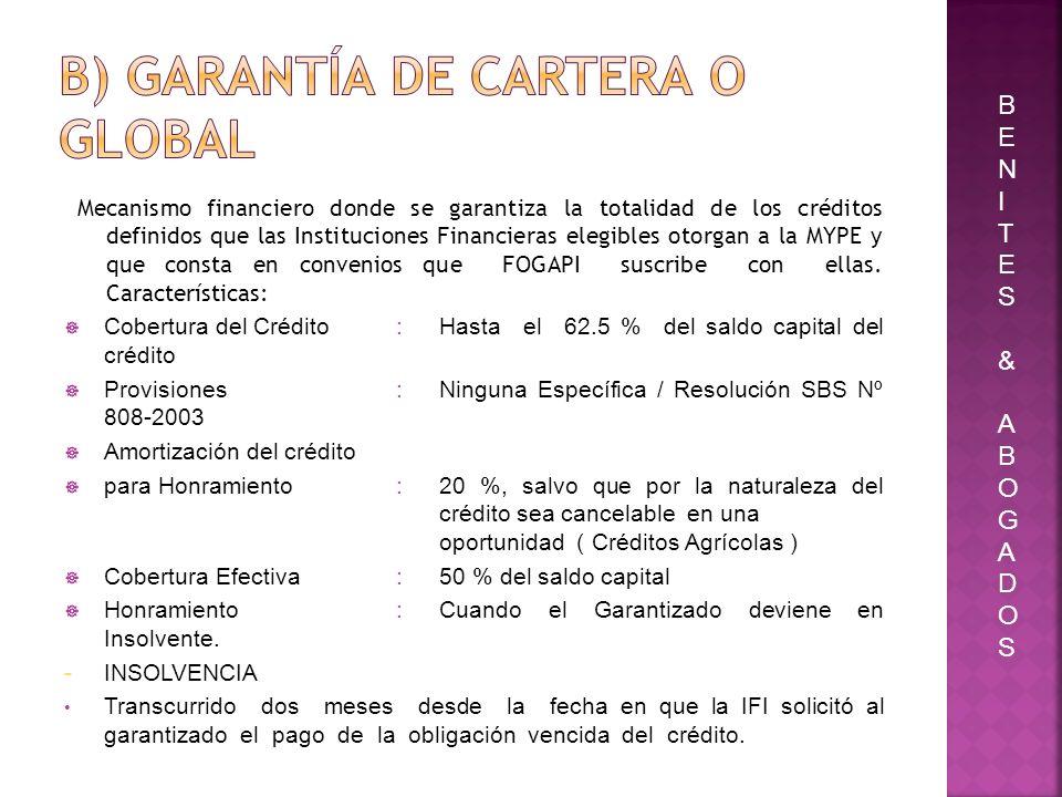 b) Garantía de Cartera o Global