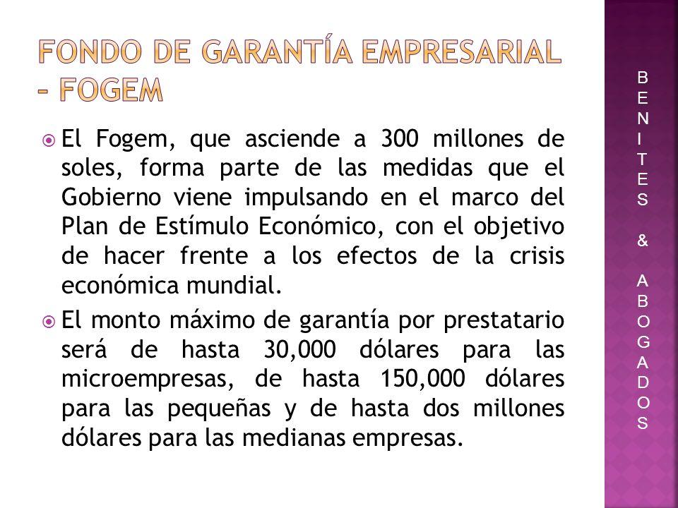 Fondo de Garantía Empresarial – FOGEM