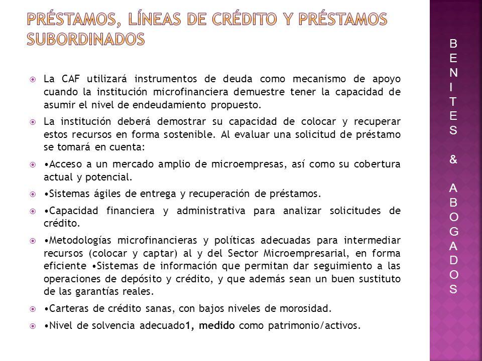Préstamos, líneas de crédito y préstamos subordinados