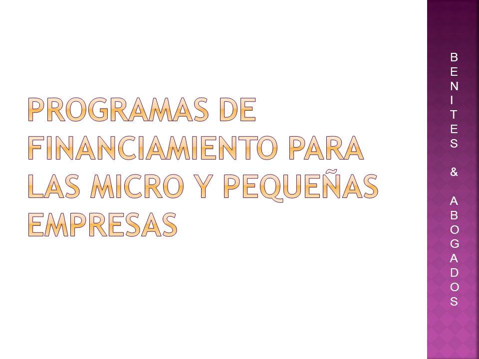 PROGRAMAS DE FINANCIAMIENTO PARA LAS MICRO Y PEQUEÑAS EMPRESAS