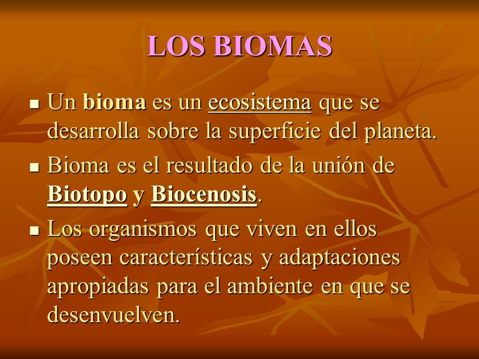 LOS BIOMAS Un bioma es un ecosistema que se desarrolla sobre la superficie del planeta. Bioma es el resultado de la unión de Biotopo y Biocenosis.