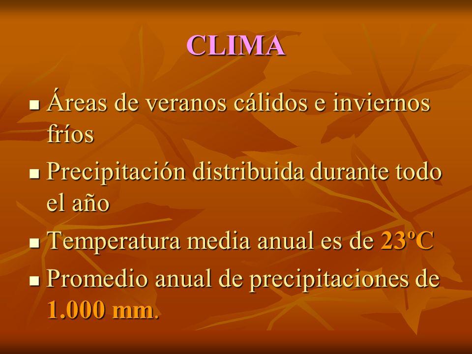 CLIMA Áreas de veranos cálidos e inviernos fríos