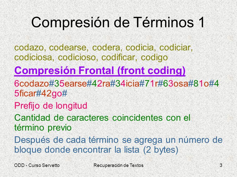 Compresión de Términos 1
