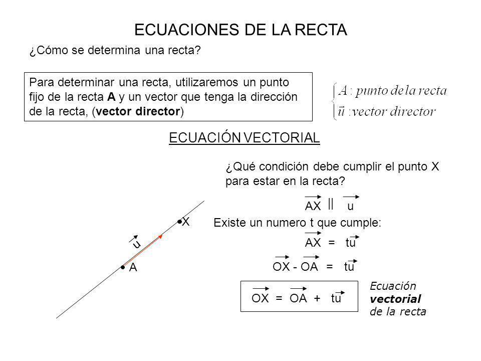 ECUACIONES DE LA RECTA ECUACIÓN VECTORIAL