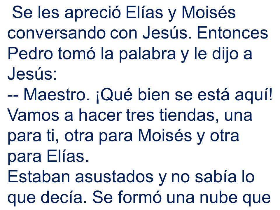 Se les apreció Elías y Moisés conversando con Jesús