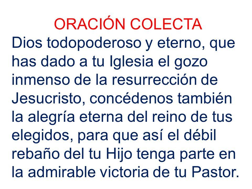ORACIÓN COLECTA