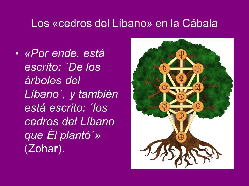 Los «cedros del Líbano» en la Cábala