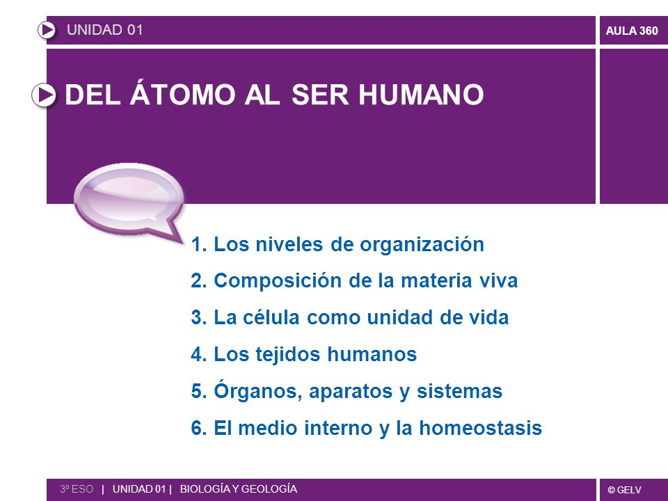 DEL ÁTOMO AL SER HUMANO 1. Los niveles de organización