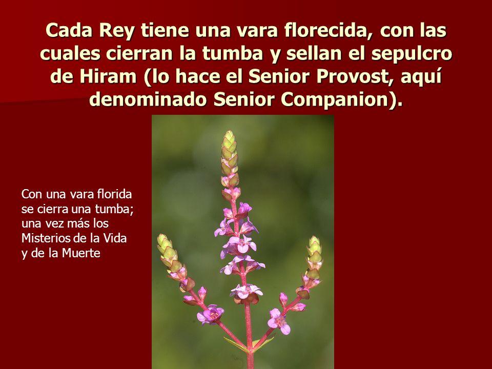 Cada Rey tiene una vara florecida, con las cuales cierran la tumba y sellan el sepulcro de Hiram (lo hace el Senior Provost, aquí denominado Senior Companion).