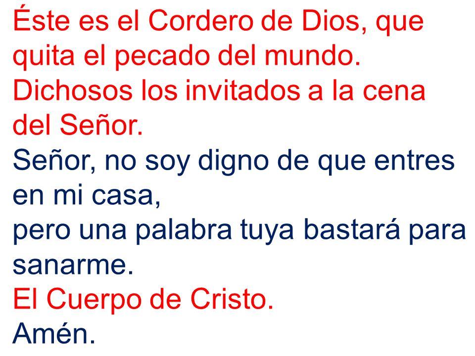 Éste es el Cordero de Dios, que quita el pecado del mundo.