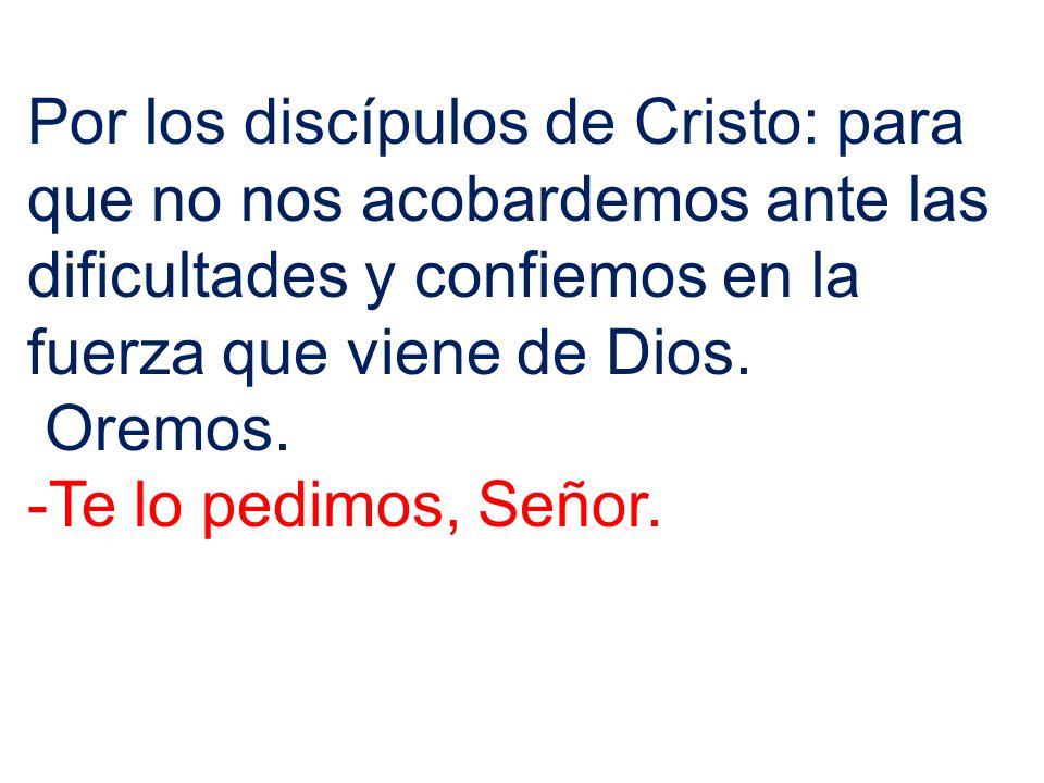 Por los discípulos de Cristo: para que no nos acobardemos ante las dificultades y confiemos en la fuerza que viene de Dios.