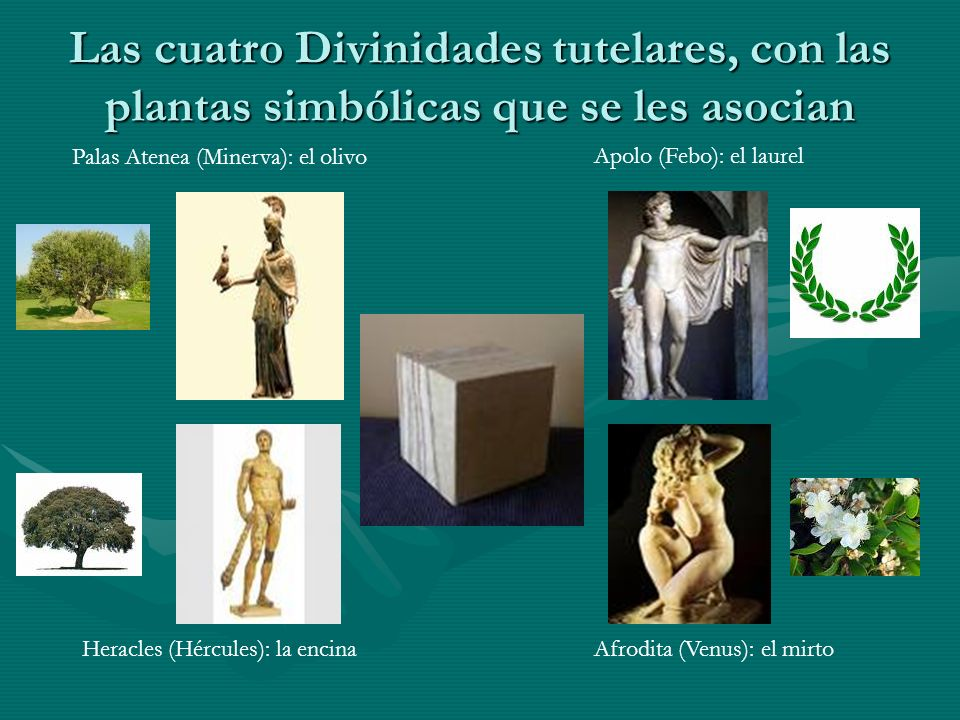 Las cuatro Divinidades tutelares, con las plantas simbólicas que se les asocian
