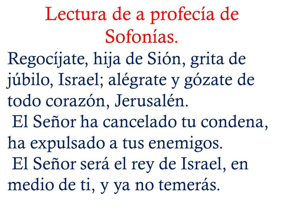 Lectura de a profecía de Sofonías.