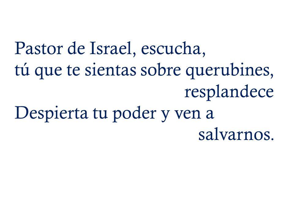 Pastor de Israel, escucha,