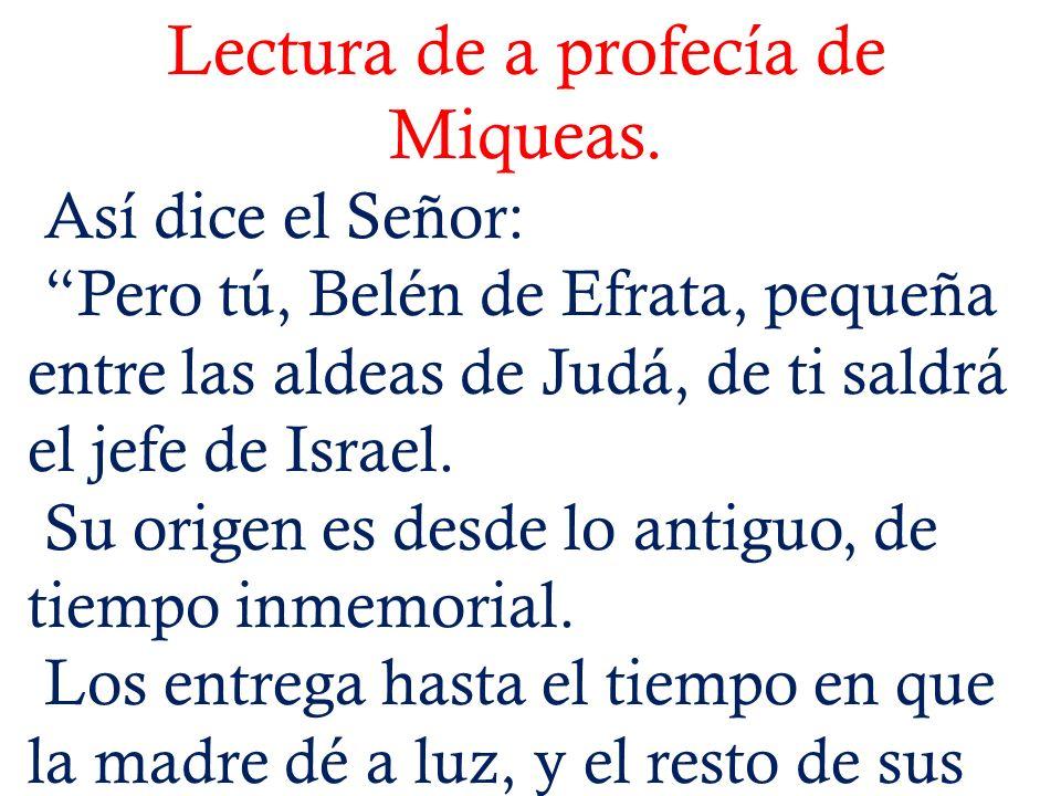 Lectura de a profecía de Miqueas.