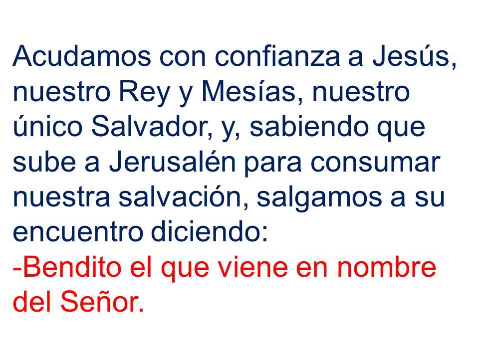 Acudamos con confianza a Jesús, nuestro Rey y Mesías, nuestro único Salvador, y, sabiendo que sube a Jerusalén para consumar nuestra salvación, salgamos a su encuentro diciendo: