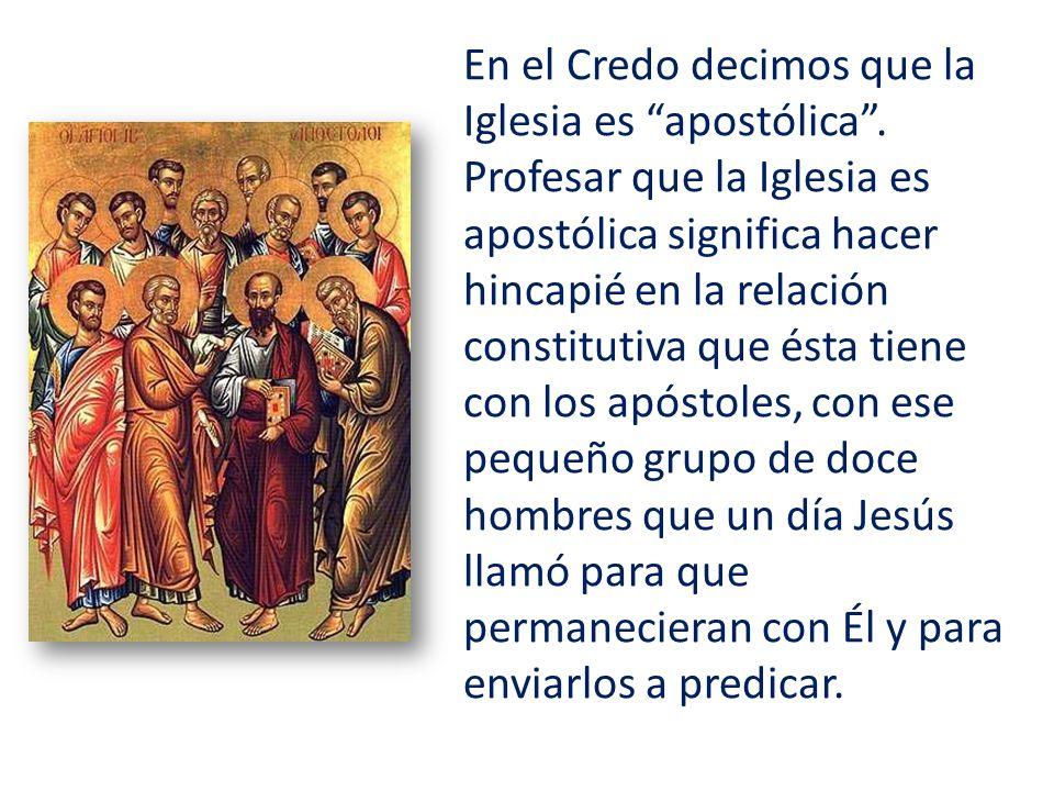 En el Credo decimos que la Iglesia es apostólica