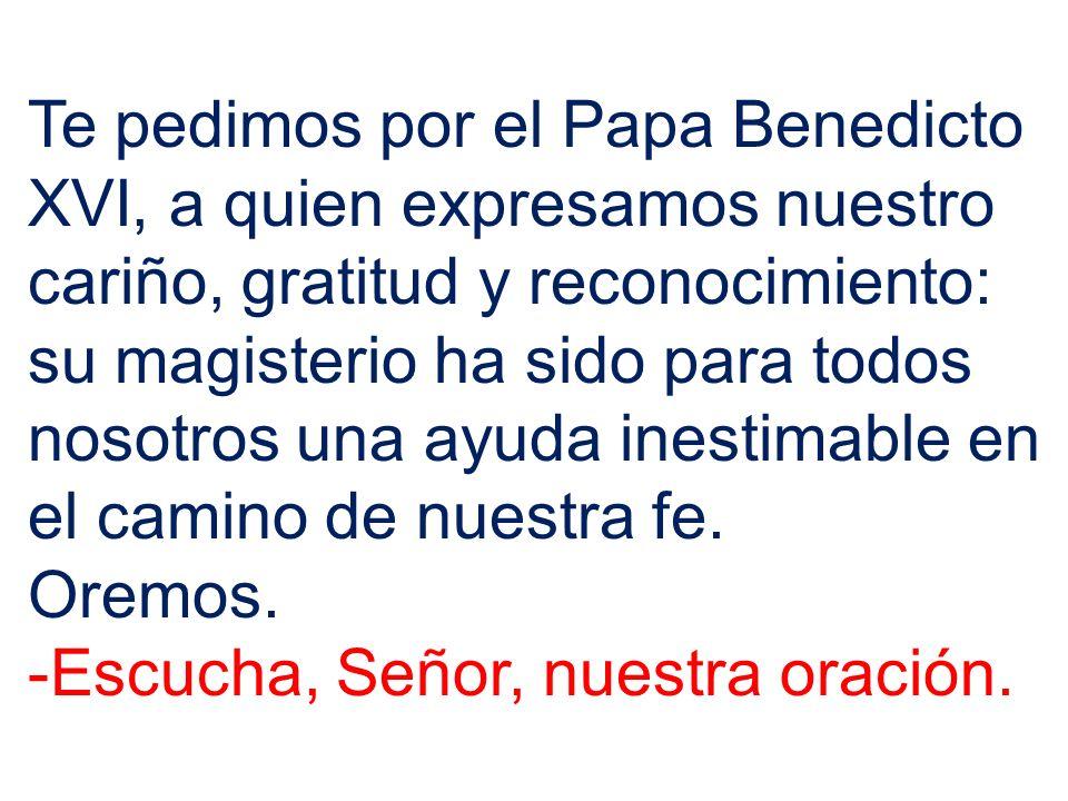 Te pedimos por el Papa Benedicto XVI, a quien expresamos nuestro cariño, gratitud y reconocimiento: su magisterio ha sido para todos nosotros una ayuda inestimable en el camino de nuestra fe.