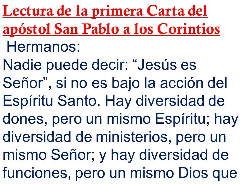 Lectura de la primera Carta del apóstol San Pablo a los Corintios
