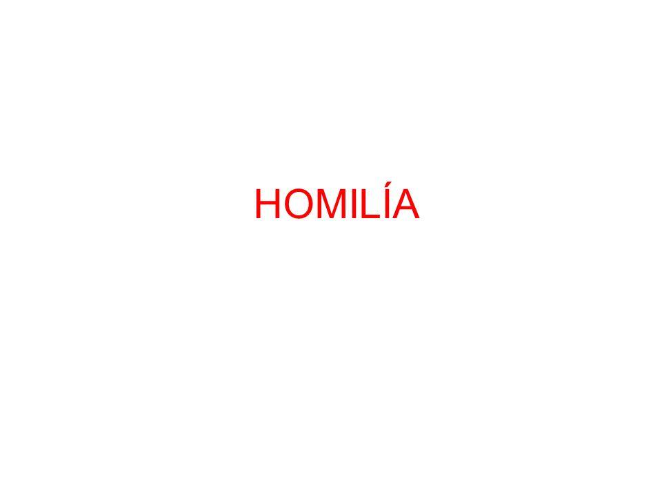 HOMILÍA