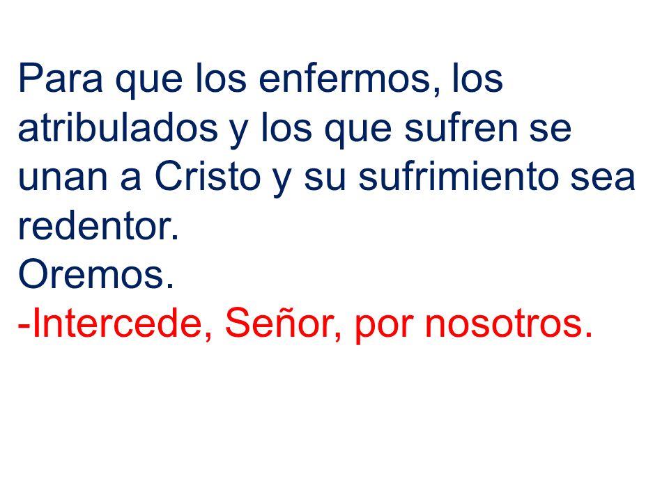 Para que los enfermos, los atribulados y los que sufren se unan a Cristo y su sufrimiento sea redentor.