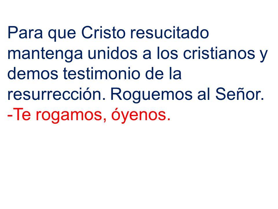 Para que Cristo resucitado mantenga unidos a los cristianos y demos testimonio de la resurrección. Roguemos al Señor.