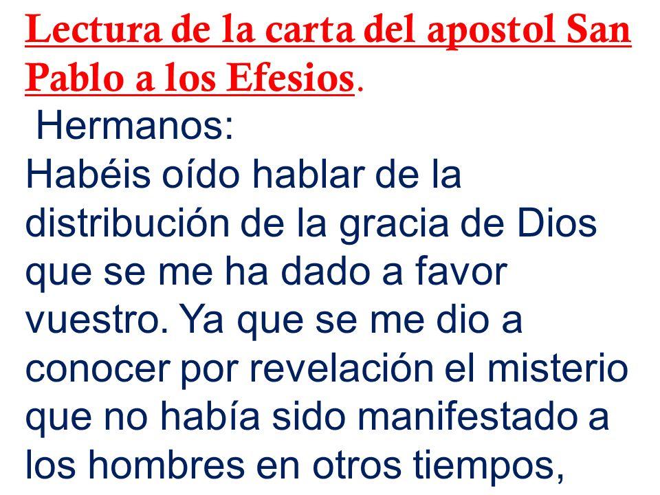Lectura de la carta del apostol San Pablo a los Efesios.