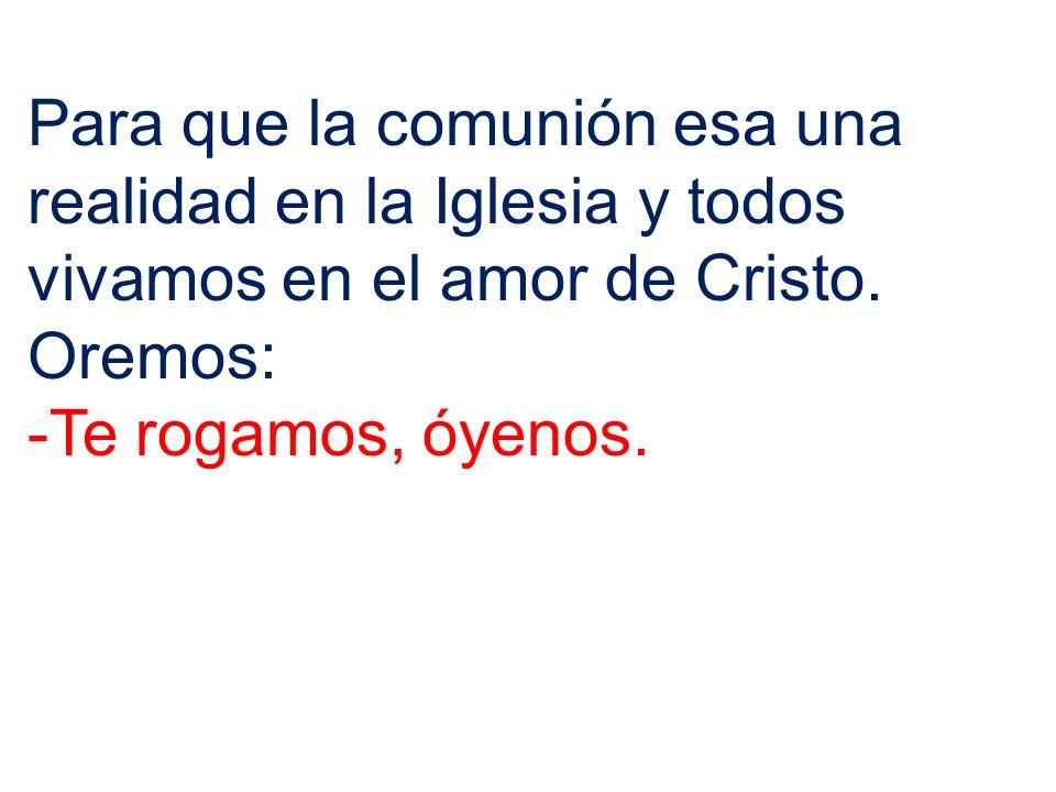 Para que la comunión esa una realidad en la Iglesia y todos vivamos en el amor de Cristo.