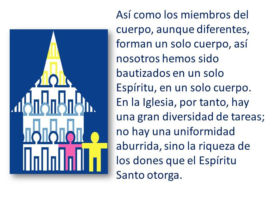 Así como los miembros del cuerpo, aunque diferentes, forman un solo cuerpo, así nosotros hemos sido bautizados en un solo Espíritu, en un solo cuerpo.