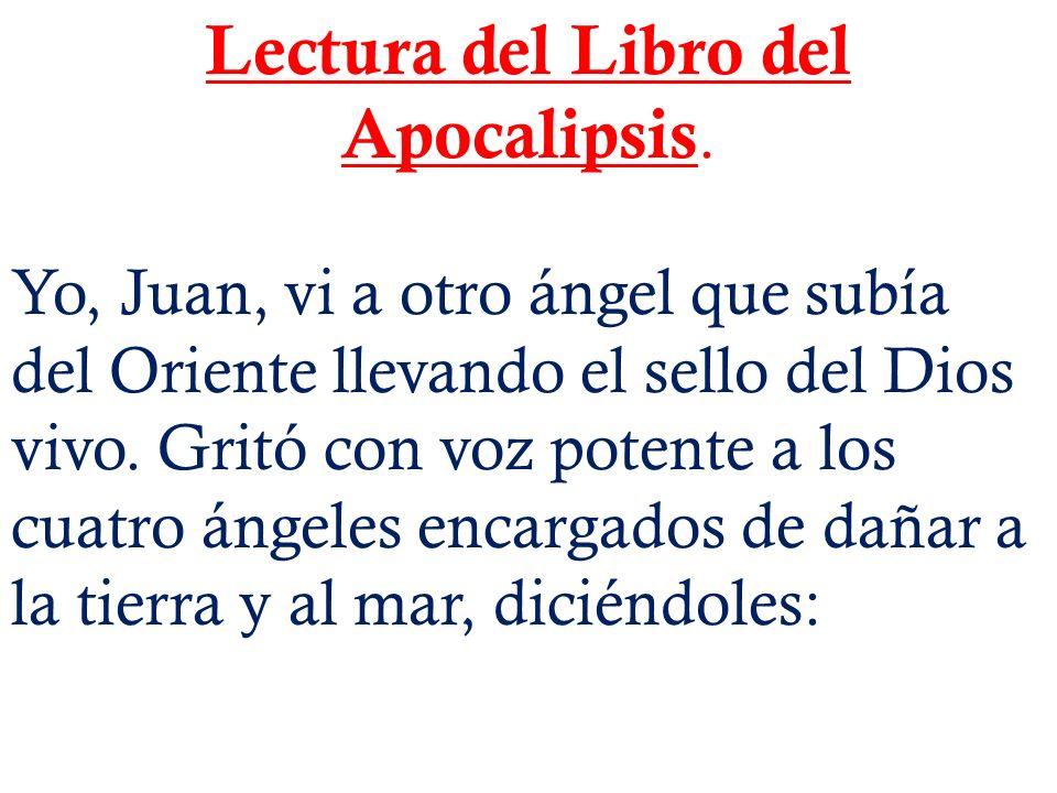 Lectura del Libro del Apocalipsis.