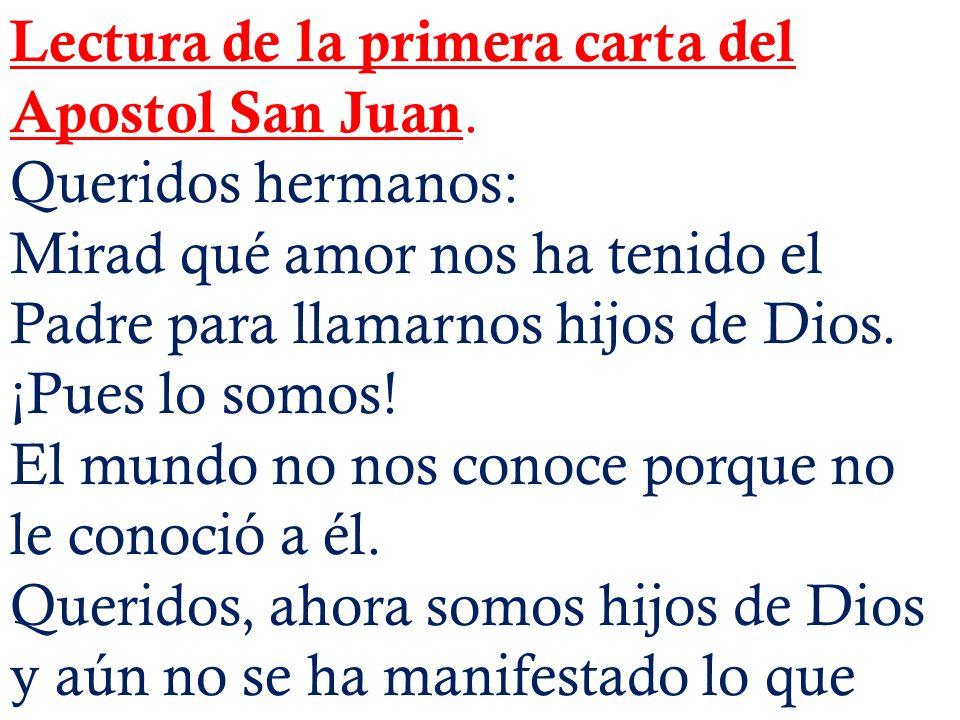 Lectura de la primera carta del Apostol San Juan.