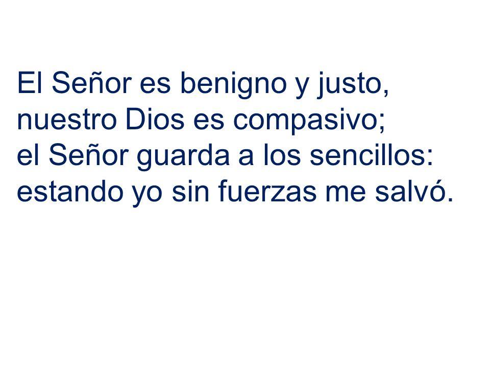 El Señor es benigno y justo,
