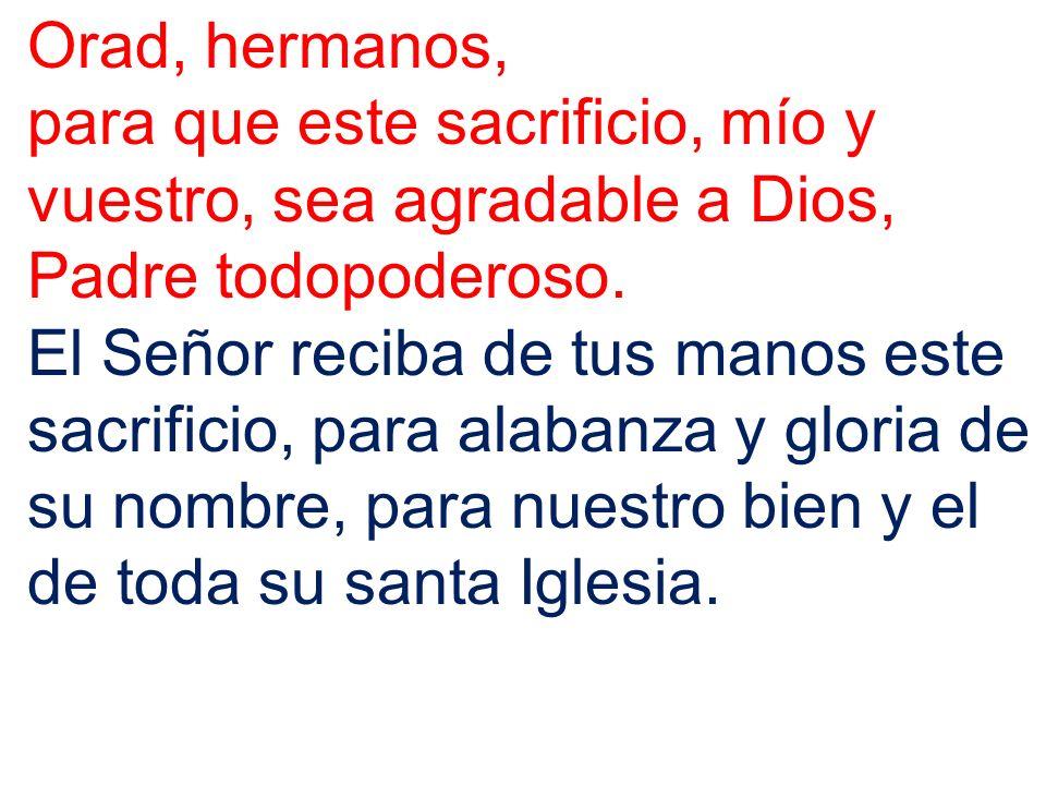 Orad, hermanos, para que este sacrificio, mío y vuestro, sea agradable a Dios, Padre todopoderoso.