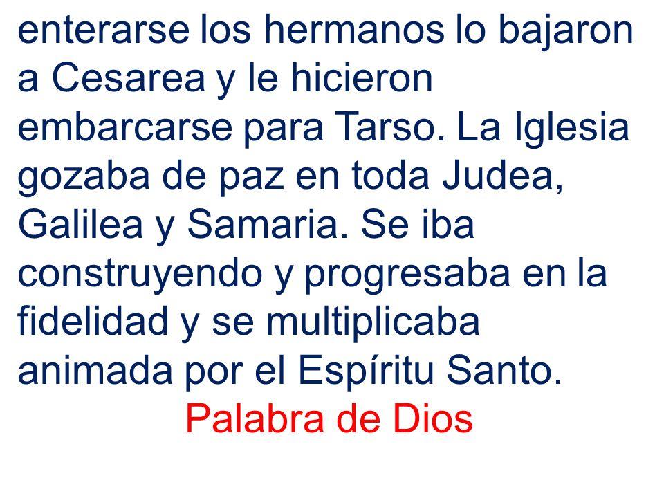 enterarse los hermanos lo bajaron a Cesarea y le hicieron embarcarse para Tarso. La Iglesia gozaba de paz en toda Judea, Galilea y Samaria. Se iba construyendo y progresaba en la fidelidad y se multiplicaba animada por el Espíritu Santo.