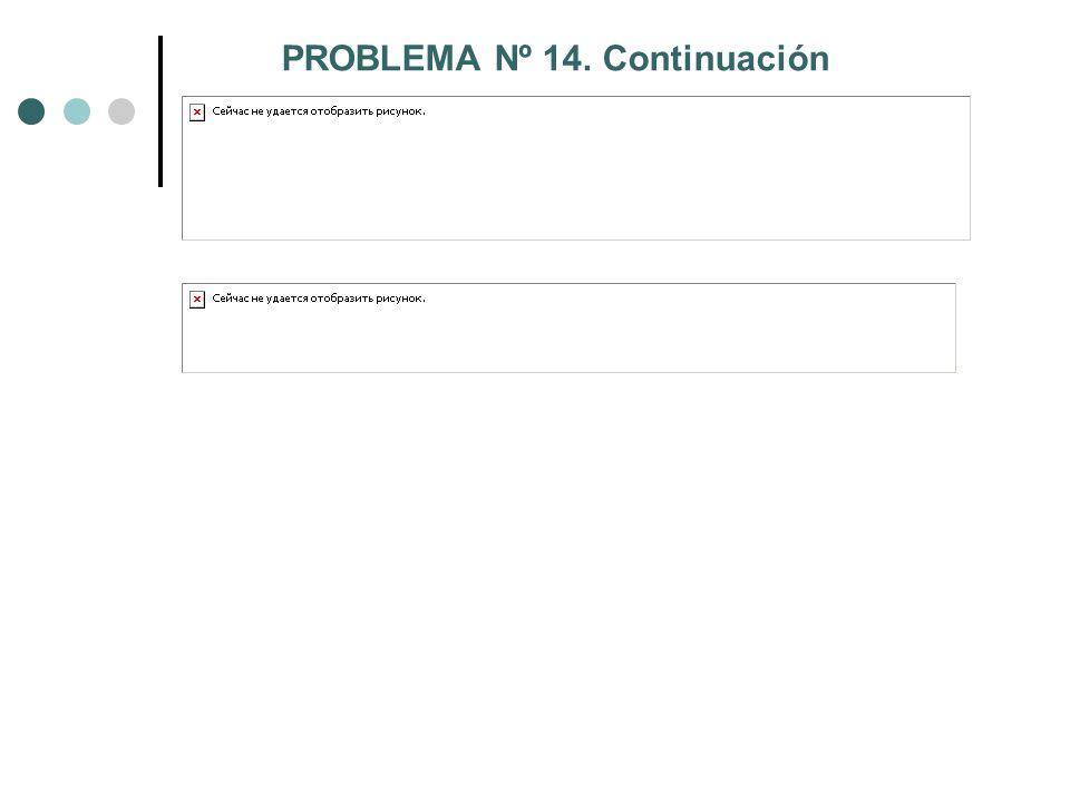 PROBLEMA Nº 14. Continuación