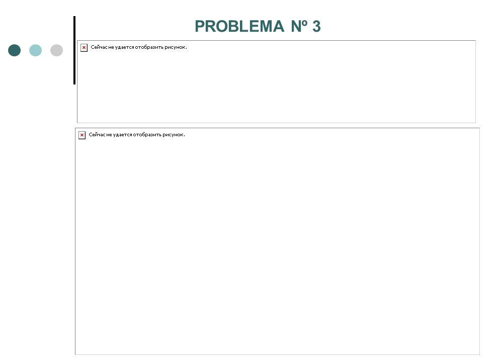 PROBLEMA Nº 3