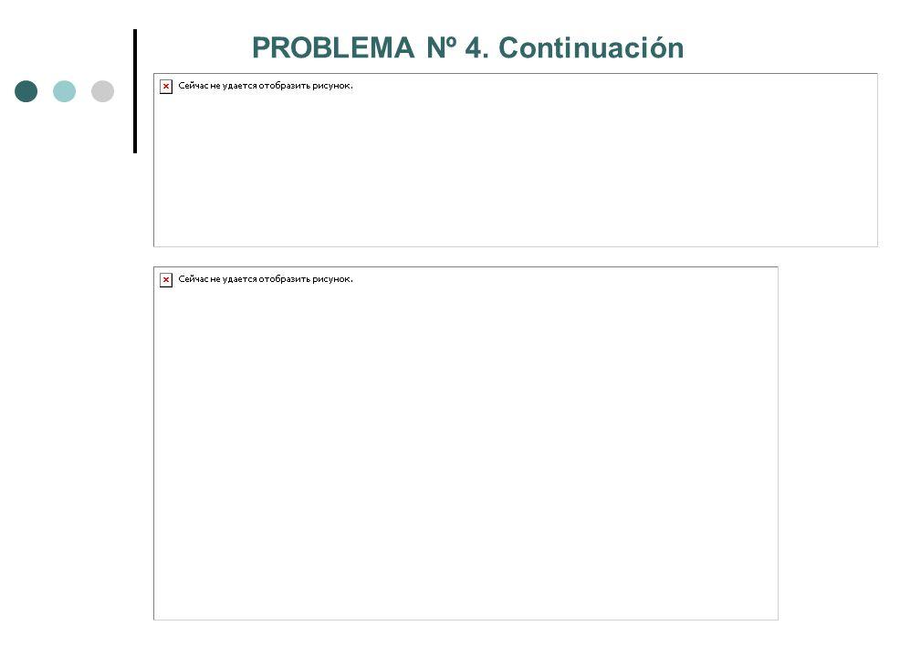 PROBLEMA Nº 4. Continuación