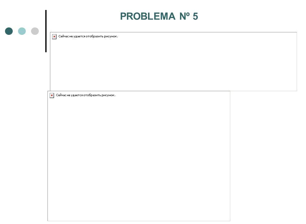 PROBLEMA Nº 5