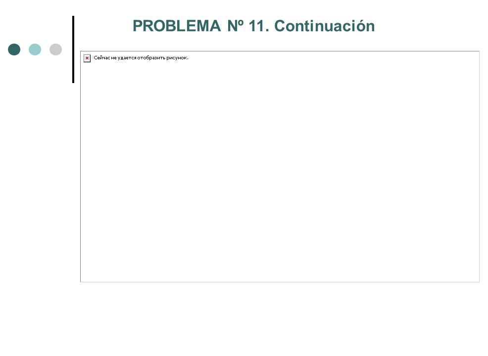 PROBLEMA Nº 11. Continuación