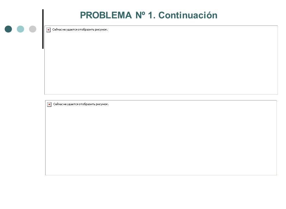 PROBLEMA Nº 1. Continuación