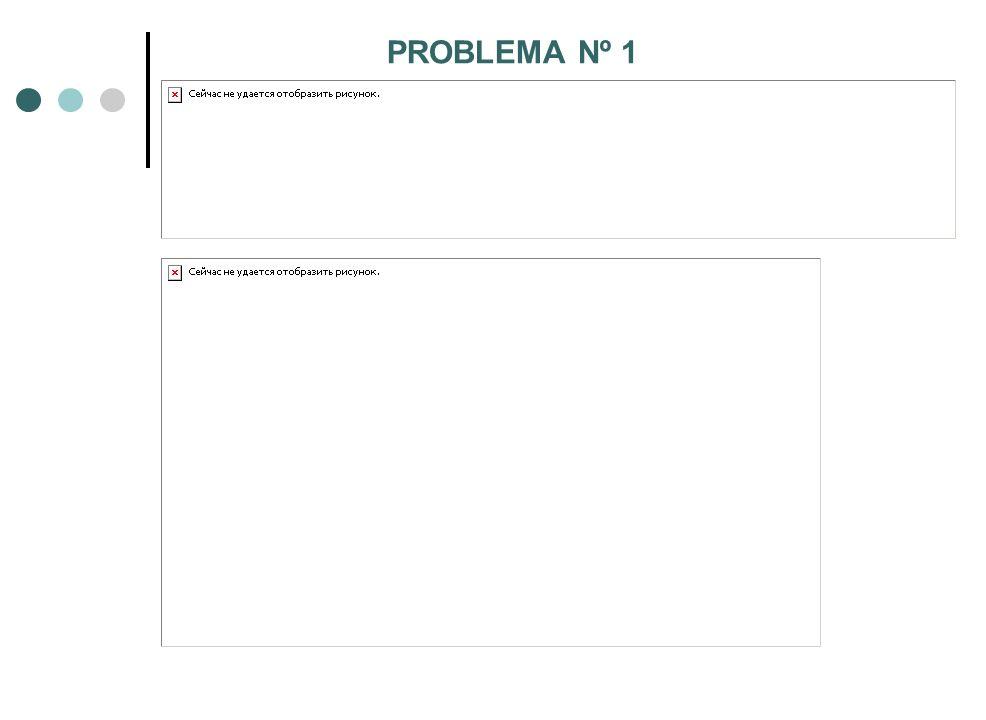 PROBLEMA Nº 1