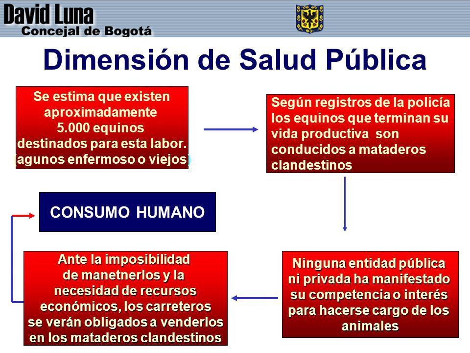 Dimensión de Salud Pública
