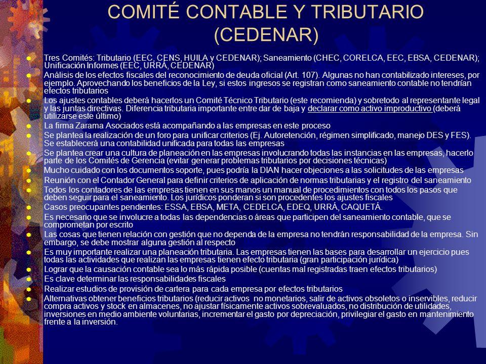 COMITÉ CONTABLE Y TRIBUTARIO (CEDENAR)