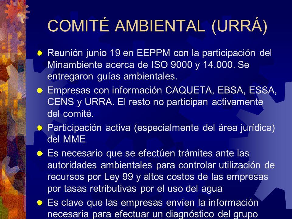 COMITÉ AMBIENTAL (URRÁ)