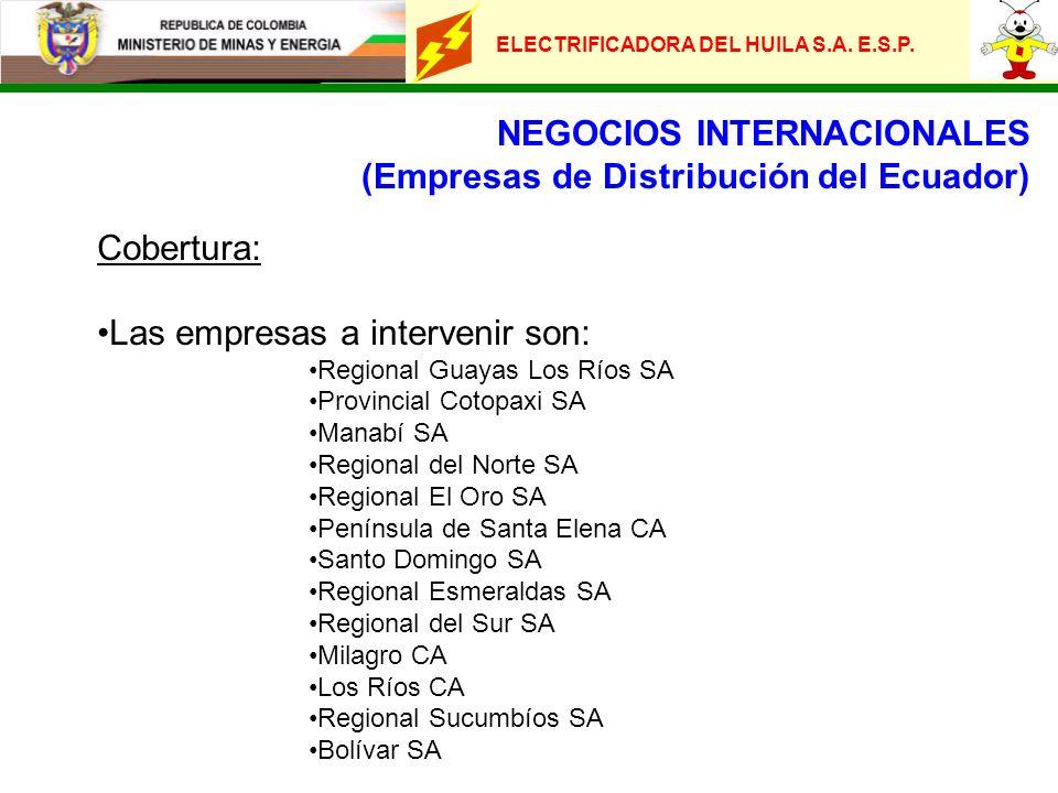 NEGOCIOS INTERNACIONALES (Empresas de Distribución del Ecuador)