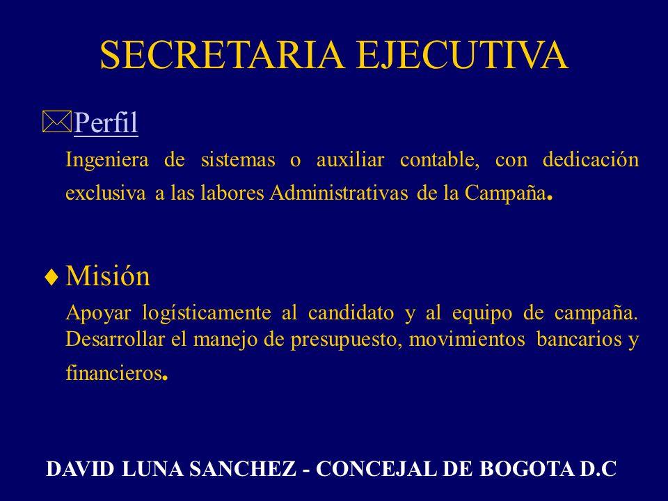 SECRETARIA EJECUTIVA Perfil Misión