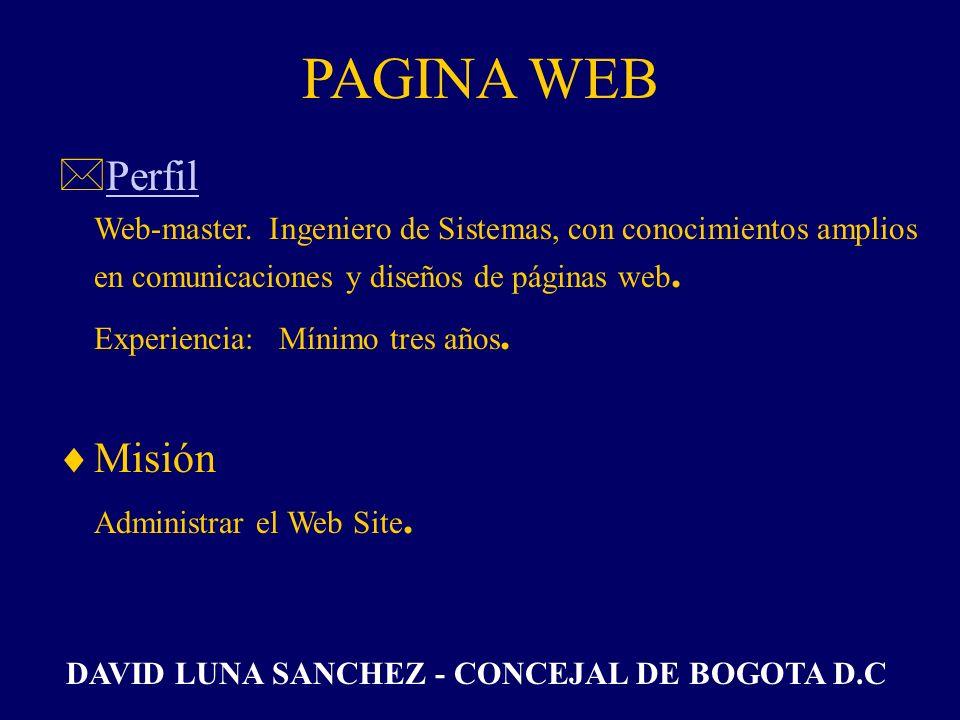 PAGINA WEB Perfil Experiencia: Mínimo tres años. Misión